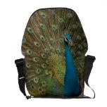 fractal peacock messanger bag