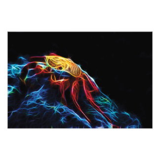 Fractal rojo del cangrejo de roca fotografía
