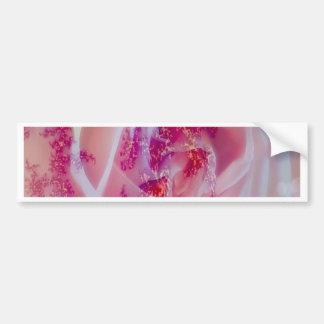 fractal rose, pink bumper sticker