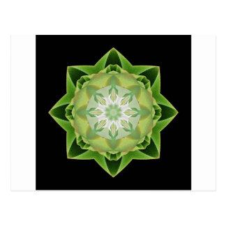 Fractal Stardust green Postcard