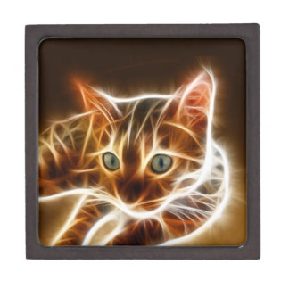 Fractalius Bengal Cat Jewelry Box