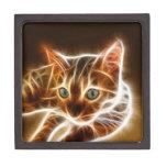 Fractalius Bengal Cat Premium Gift Boxes