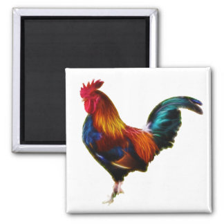 Fractalius Leghorn Rooster 2 Inch Square Magnet