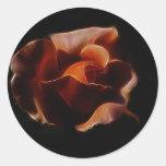 Fractualis color de rosa anaranjado etiquetas