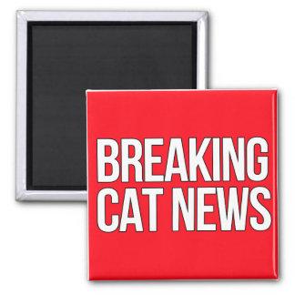 Fractura del imán de las noticias del gato