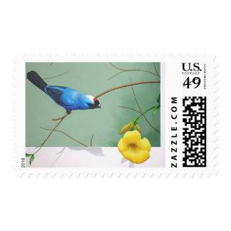 Frade sanhaço stamps