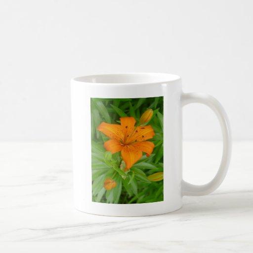 Fragancia de flores taza de café
