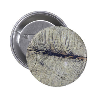 Fragile Fossil Plant Leaf 2 Inch Round Button