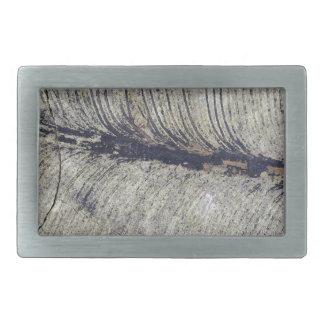 Fragile Fossil Plant Leaf Belt Buckle