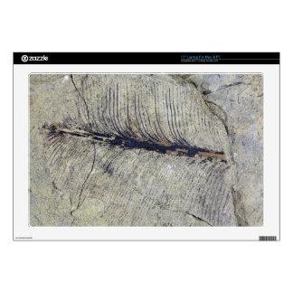 "Fragile Fossil Plant Leaf Decals For 17"" Laptops"