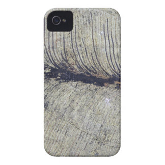 Fragile Fossil Plant Leaf iPhone 4 Case-Mate Case