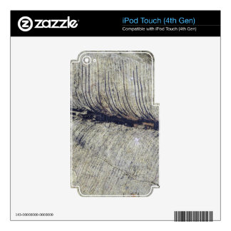 Fragile Fossil Plant Leaf Skin For iPod Touch 4G