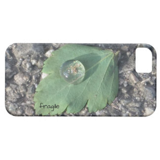 fragile iPhone 5/5s/SE cover