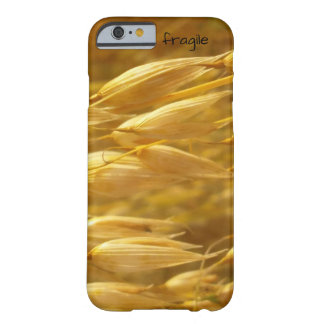fragile iPhone 6 cover