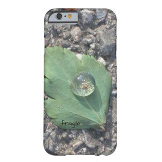 fragile phone cover