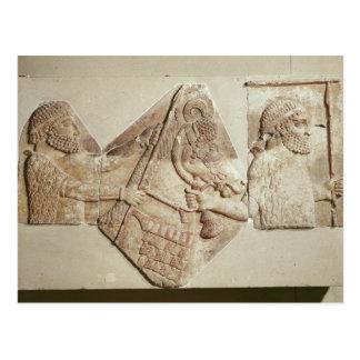 Fragment of a depicting Median tributaries Postcard