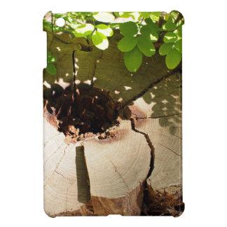 Fragment of an old stump of cut tree that has rott iPad mini cover