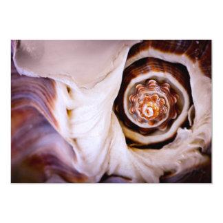 Fragmento del Seashell Invitación 12,7 X 17,8 Cm