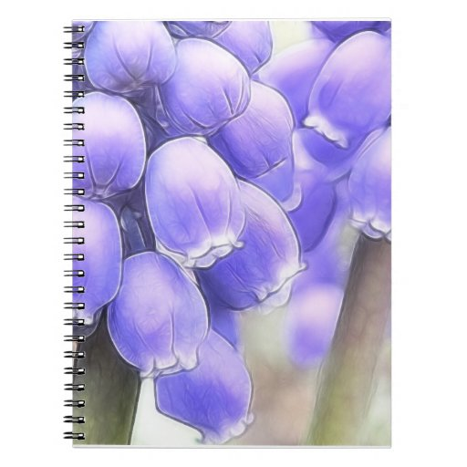 Fragrant Muscari Blooms Note Book
