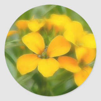 Fragrant Orange Cheiranthus Round Stickers