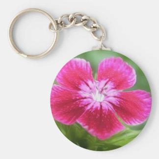 Fragrant Pink Sweet William Blossom Keychain