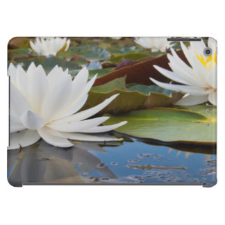 Fragrant Water Lily (Nymphaea Odorata) On Caddo iPad Air Covers