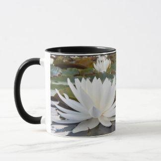 Fragrant Water Lily (Nymphaea Odorata) On Caddo Mug