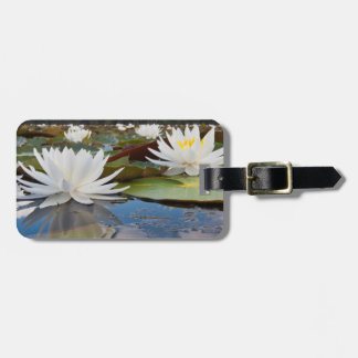 Fragrant Water Lily (Nymphaea Odorata) On Caddo Tag For Luggage