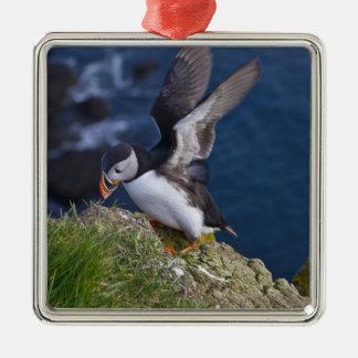 Frailecillo atlántico arctica del Fratercula 2 Ornaments Para Arbol De Navidad