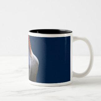 Frailecillo atlántico (arctica del Fratercula) 3 Tazas De Café