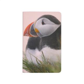 Frailecillo atlántico (arctica del Fratercula) 6 Cuadernos Grapados