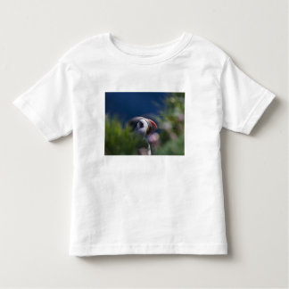 Frailecillo atlántico (arctica del Fratercula) Camisas