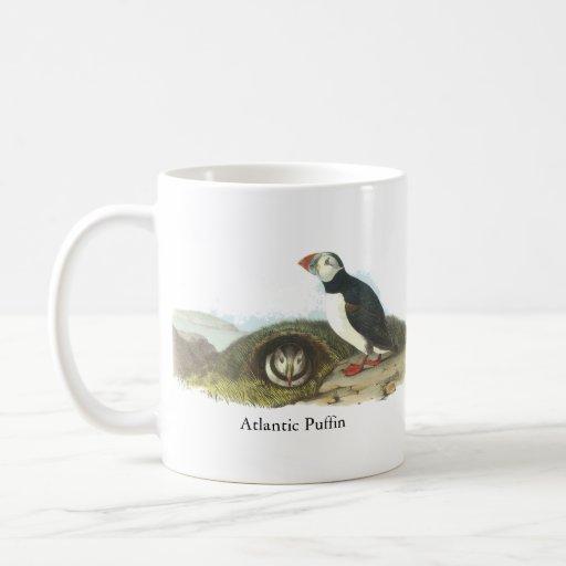 Frailecillo atlántico, Juan Audubon Tazas De Café