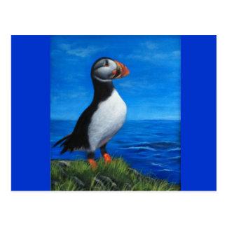 Frailecillo atlántico tarjetas postales