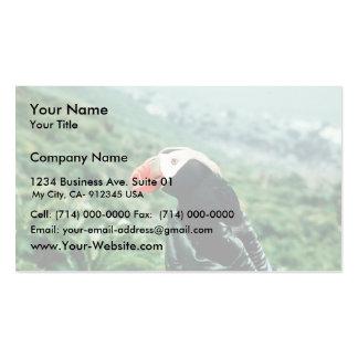 Frailecillo copetudo a disposición plantilla de tarjeta de negocio