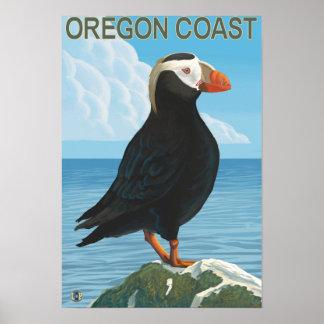 Frailecillo copetudo de la costa de Oregon Póster