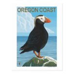 Frailecillo copetudo de la costa de Oregon Tarjeta Postal