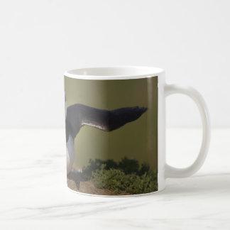 Frailecillo del aleteo taza de café