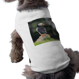 Frailecillo en una roca camisetas de perro