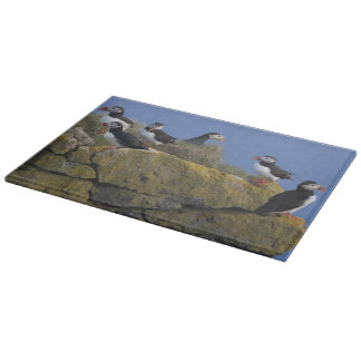 Frailecillos atlánticos (arctica del Fratercula) Tabla De Cortar