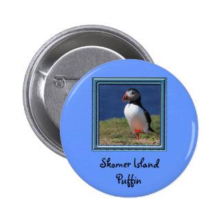 Frailecillos de la isla de Skomer Pins