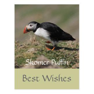Frailecillos de la isla de Skomer Postales