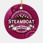 Frambuesa del logotipo del barco de vapor ornaments para arbol de navidad