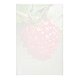 Frambuesa hawaiana (hawaiiensis del Rubus) Papeleria