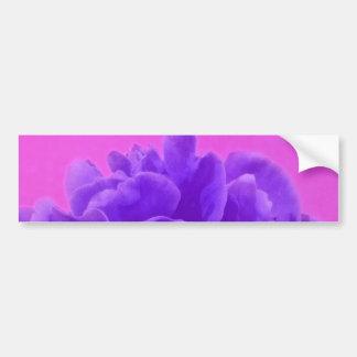 Frambuesa púrpura elegante floral pegatina para auto