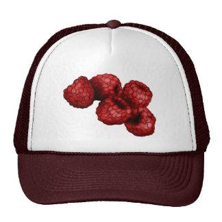 Frambuesa Trucker Hat