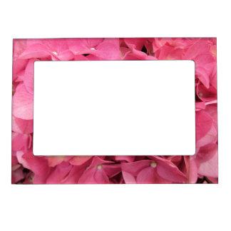 Frame - Magnetic - Dark Pink Hydrangeas