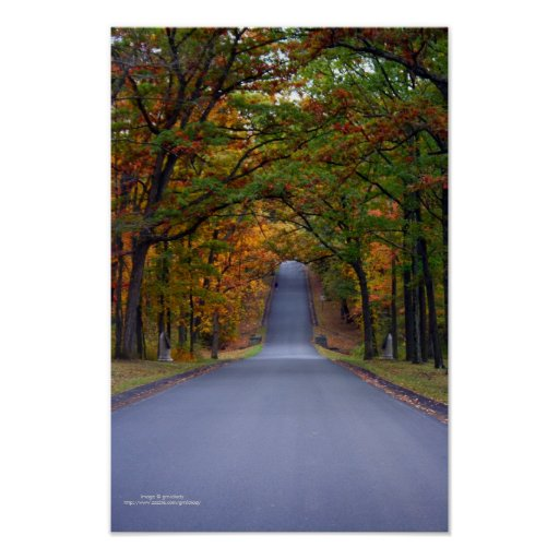 Framed by Autumn Poster
