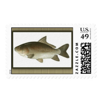 Framed Fish Image Father's Day Postage