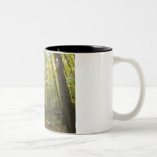 """""""Framed forest"""" mug"""